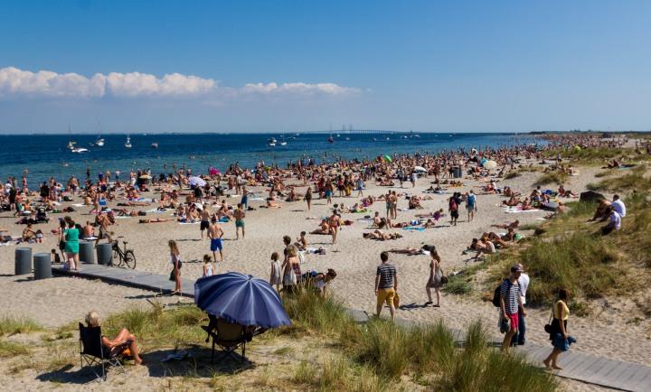 København har brug for et nytrensningsanlæg