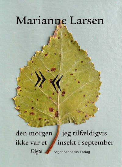 Nye bøger fra Asger SchnacksForlag